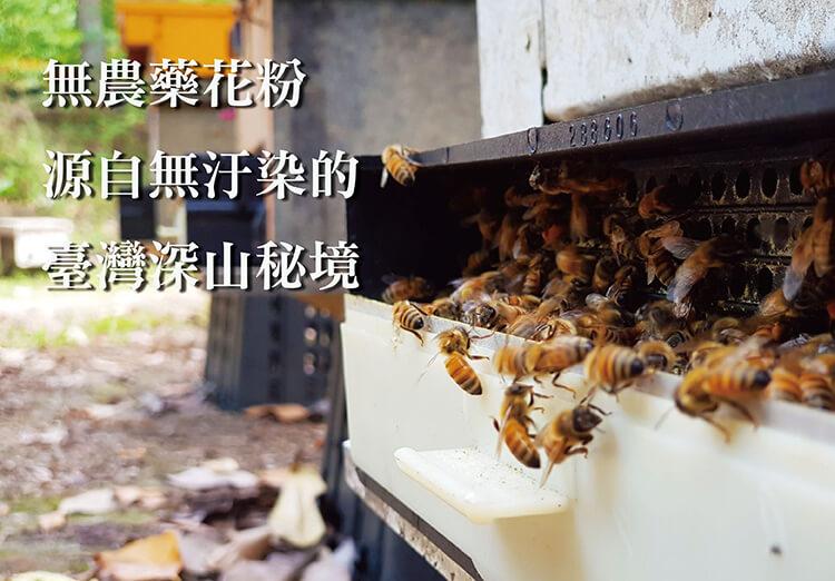 花粉採集環境
